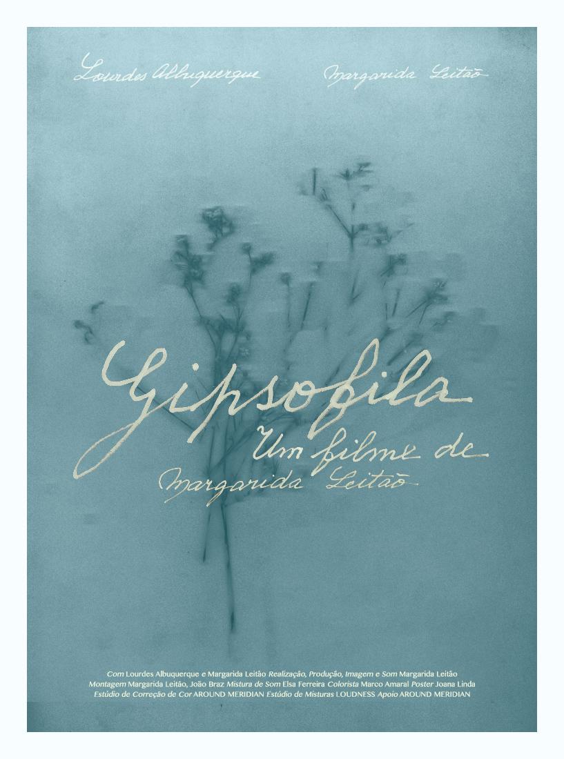 Gipsofila